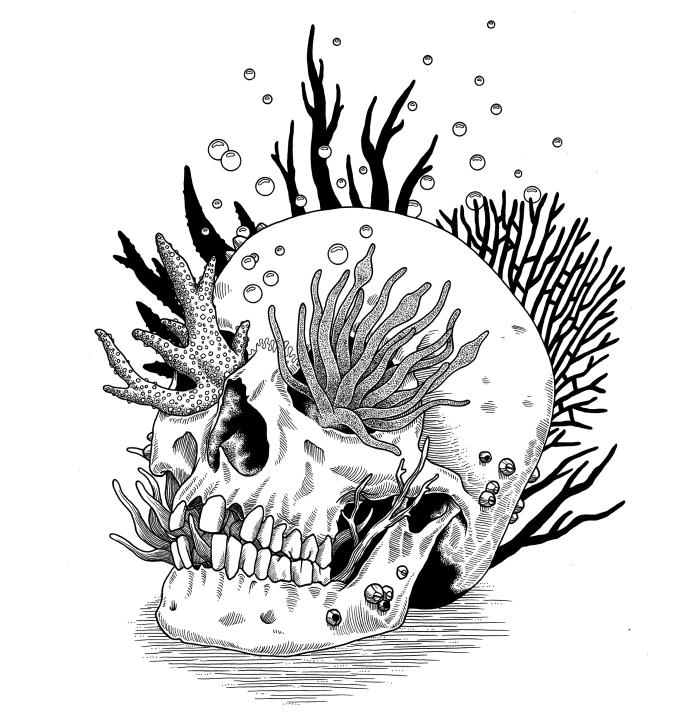 out of step reef skull