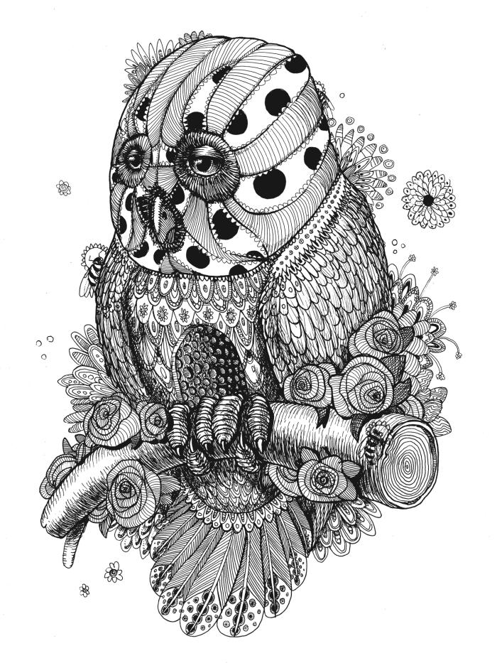 owl branch 1