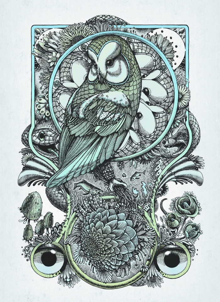 owl poster blue